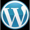 Build a WordPress business website